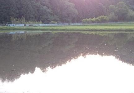 田植え前の田んぼの風景です。