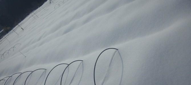 雪いっぱいの京北・黒田
