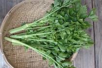セロリ<br/>Celery