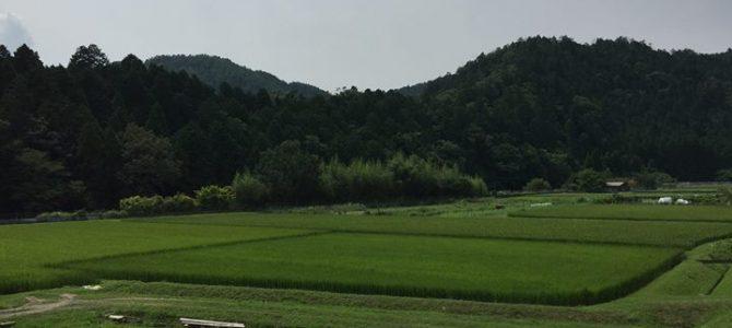 ご近所でわくわくするプロジェクトが立ち上がっています!ぜひ京北黒田へ!