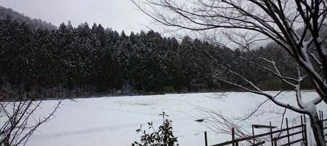 黒田もとうとう冬景色。