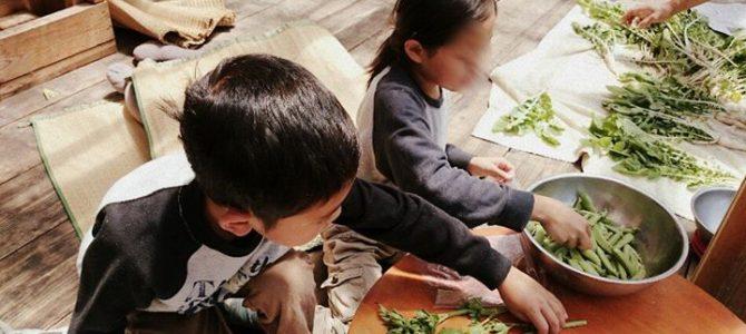 お野菜の仕分け作業、子どもたちも楽しみながら手伝ってくれています。
