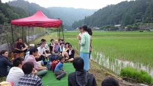 Students to experience weeding in a paddy!